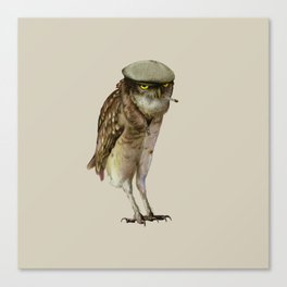 trendy owl Canvas Print