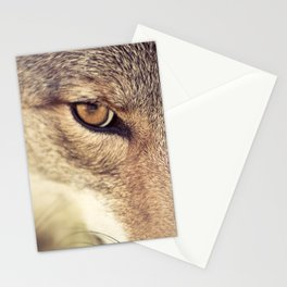 In the eyes of the Coyote Stationery Cards
