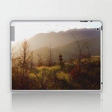 Wilding Pine Laptop & iPad Skin