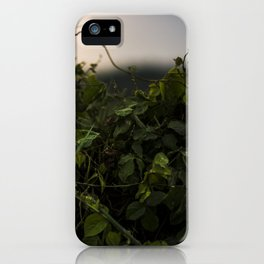 Sunset in Maui iPhone Case