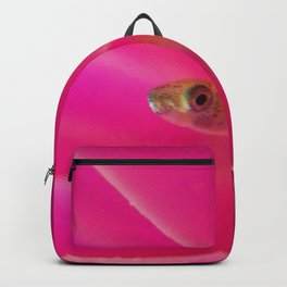Baby Guppy 1 Backpack