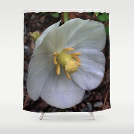 Mayapple Flower Shower Curtain