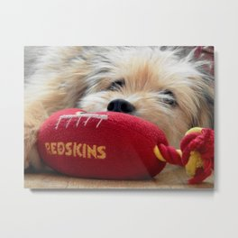 Redskin puppy Metal Print