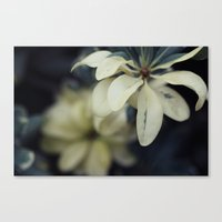 silent Canvas Prints featuring Silent by BURNEDINTOMYHE∆RT♥