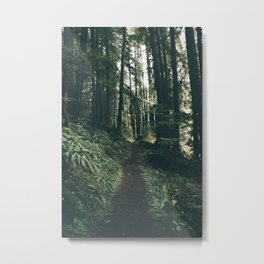 Happy Trails VII Metal Print
