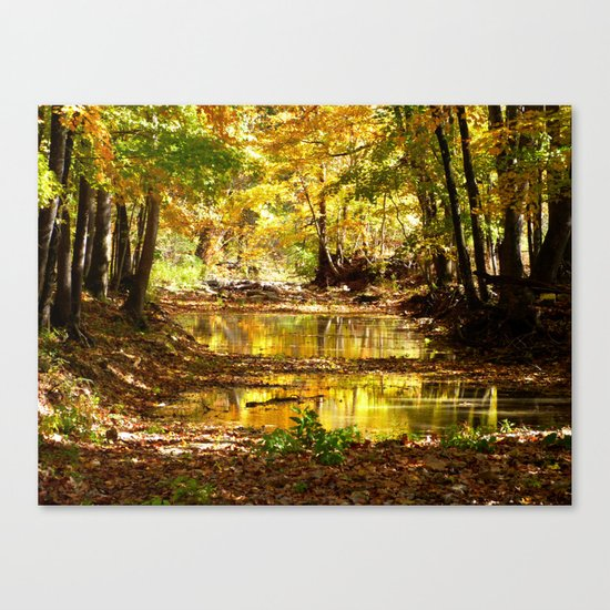 Fall afternoon III Canvas Print