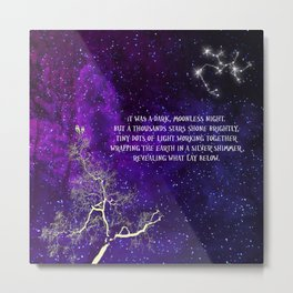 A Thousand Stars Shone Brightly Metal Print