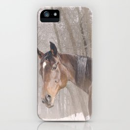 Gulliver in the snow iPhone Case