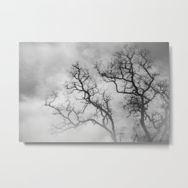 Winter Veins Metal Print