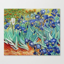 Irises Painting by Vincent van Gogh Canvas Print