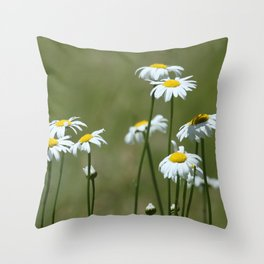 Cascade Daisy Flowers Blooming Throw Pillow