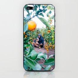 Valencian Orange Grove iPhone Skin