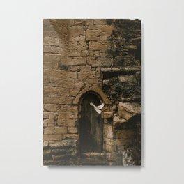 castle dweller Metal Print