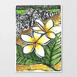 Frangipani Freedom, Puerto Rico (Plumeria alba)   Canvas Print