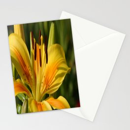 Beautiful Yellow Lily Stationery Cards