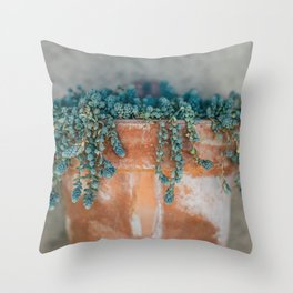 Succulent Love Throw Pillow
