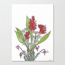 Healing Canvas Print