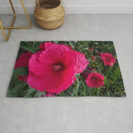 In Perfect Magenta Rug