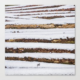 Firewood Canvas Print