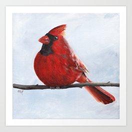 Cardinal Art Art Print