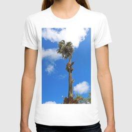 The Righteous Rhythm T-shirt