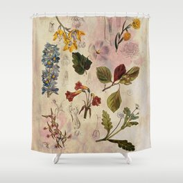 Botanical Study #1, Vintage Botanical Illustration Collage Shower Curtain