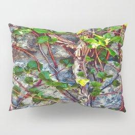 Climbing Vines - Nature's Art Work Pillow Sham