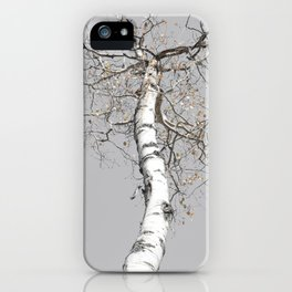 Heights so Far, Aspen Tree iPhone Case