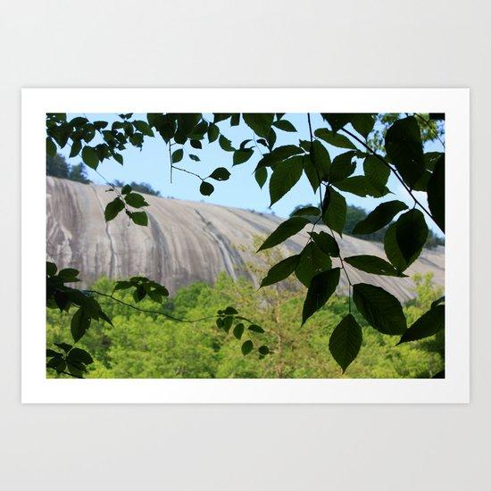 Mountain Through The Trees Art Print