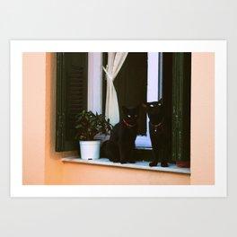 Island Cats Art Print