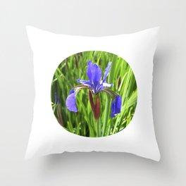 blue summer iris VI Throw Pillow