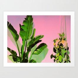 Tropical Rock I Art Print
