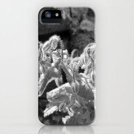 Black and white plants between rocks iPhone Case