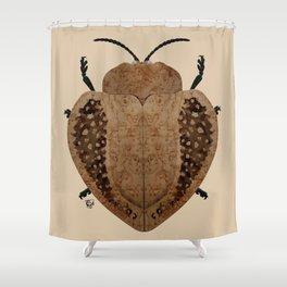 Exotic Wood Tortoise Beetle Shower Curtain