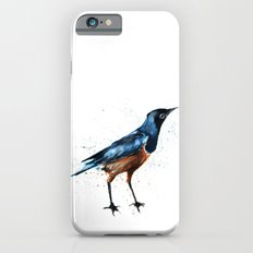 African Starling iPhone 6s Slim Case