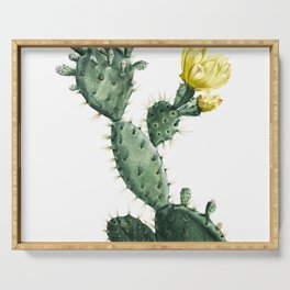 Vintage High Contrast Cactus Serving Tray