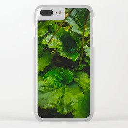 Wet Greens Clear iPhone Case
