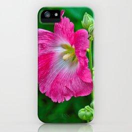 Hot Pink Hollyhock iPhone Case