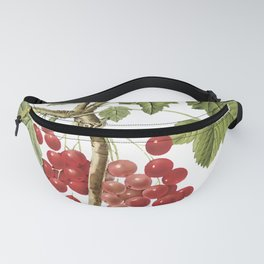 Botanical Print, Red Currant, Ribes Rubrum Fanny Pack