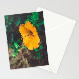 Hawaiian Flowers Stationery Cards