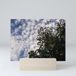 Elderberry, sky is the limit Mini Art Print