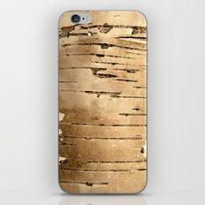 Silver birch bark  iPhone & iPod Skin