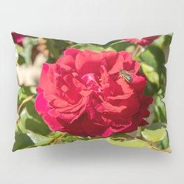 bee on rose Pillow Sham