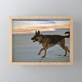 Dog Playing Fetch  Framed Mini Art Print