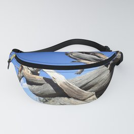 Trees and sky Fanny Pack