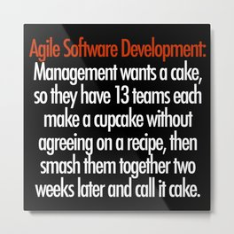 Agile Software Development Metal Print