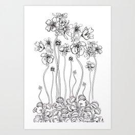 Floral Flytraps Art Print