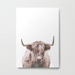 Highland Cow, Animal Art Metal Print