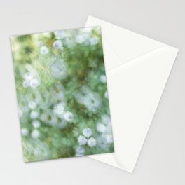 Flowers & Swirl Stationery Cards