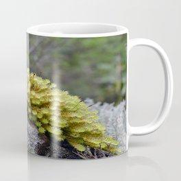 Water Plant Coffee Mug